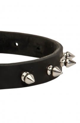 Classic Spiked Leather Dog Collar