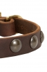 Leather Dog Collar for Puppies and Small Breeds