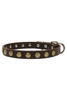Narrow Dog Collar with Old Brass Circles