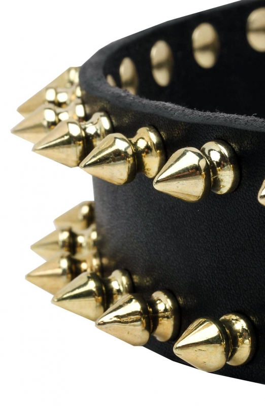 Spiked Leather Dog Collar With Gold Like Spikes Old Mill