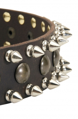 Spiked Leather Dog Collar with Awesome Decoration