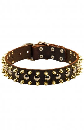 Modern Leather Dog Collar with 3 Rows of Brass Spikes and Nickel Studs