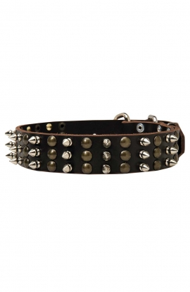 Unique Studded and Spiked Leather Dog Collar