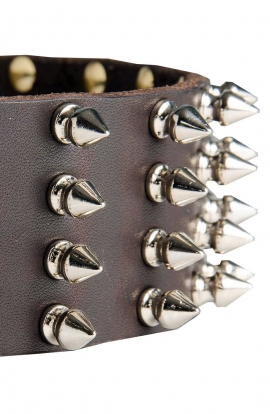 Wide Leather Spiked Dog Collar for Medium and Large Dog Breeds