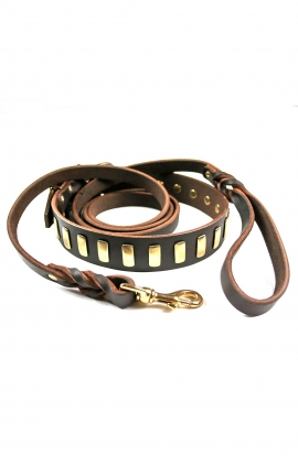 Leather Set of Decorated Dog Collar and Braided Leash