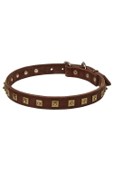 Studded Leather Dog Collar with 1 Row Brass Pyramids