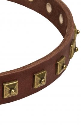Studded Leather Dog Collar with 1 Row Brass Pyramids