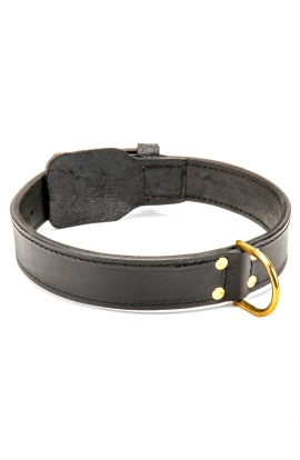 Extra Strong 2ply Leather Dog Collar with Fur Protection Plate