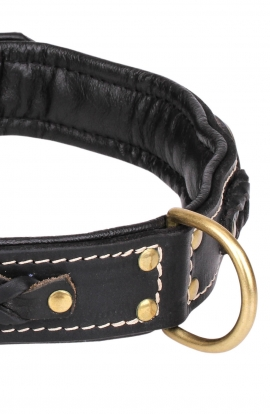Roayl Braided Dog Collar with Black Nappa Padding and Brass Decorations