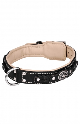 2 ply Leather Dog Collar with Nappa Padding and Nickel Decorations