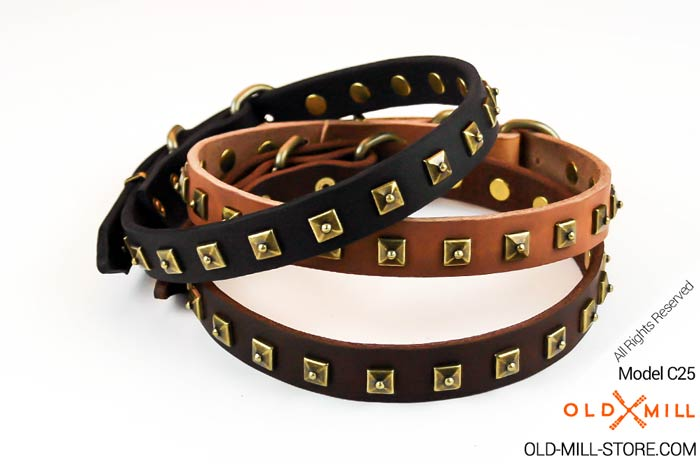 1-inch-wide-leather-dog-collar-brass-studs
