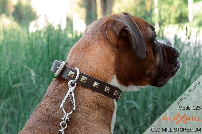 Handmade Dog Collar Leather Decorated with Square Studs for Boxer