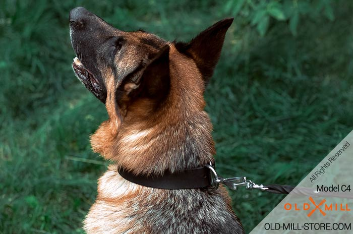 Adjustable Leather German Shepherd Collar