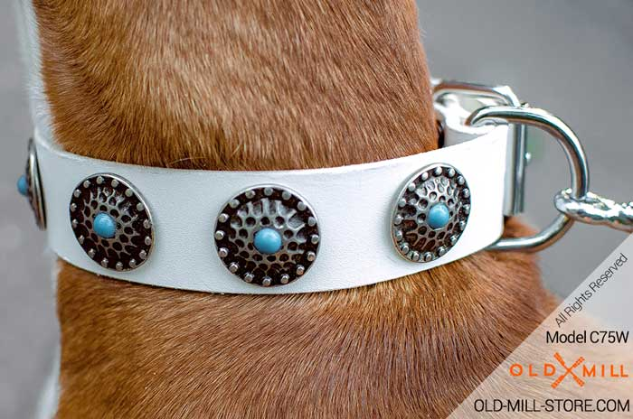 Boxer Collar with Circles and Blue Stones
