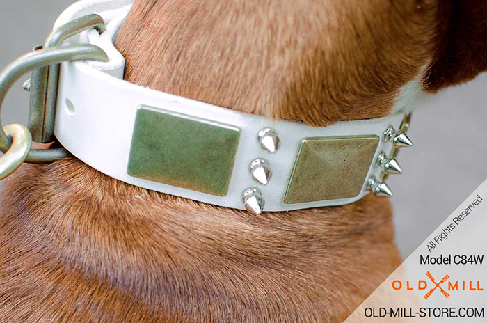 Fashion White Leather Dog Collar with Vintage Plates and Silver-like Spikes