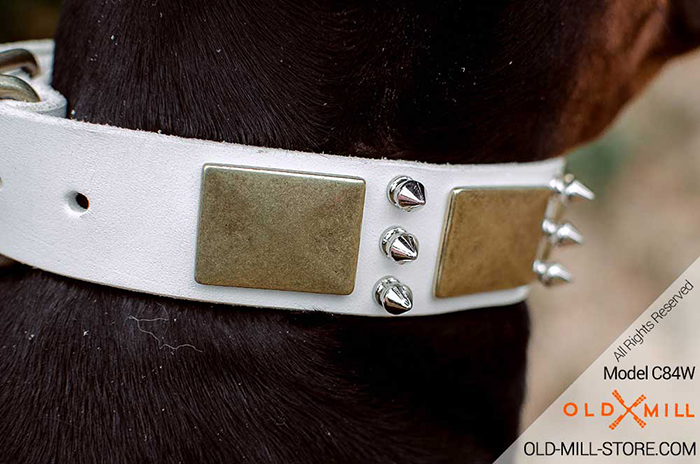 Cool White Leather Doberman Collar with Vintage Plates and Silver-color Spikes