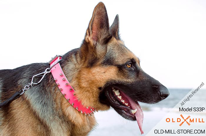 Pink Leather Spiked Girl Dog Collar German-Shepherd